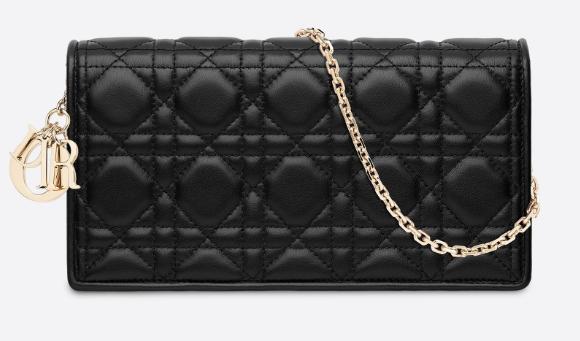 pochette lady dior sac de luxe